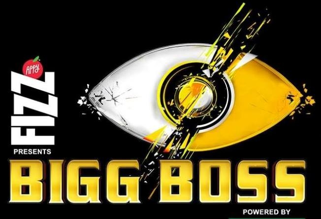 Bigg_Boss_11.jpg