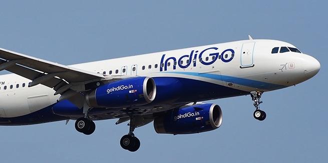indigo_airlines.jpg