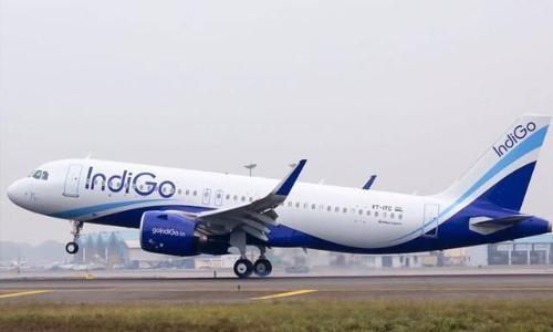 Indigo_plane.jpg
