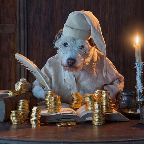 ajabgajab_every_christmas_this_dog.jpg