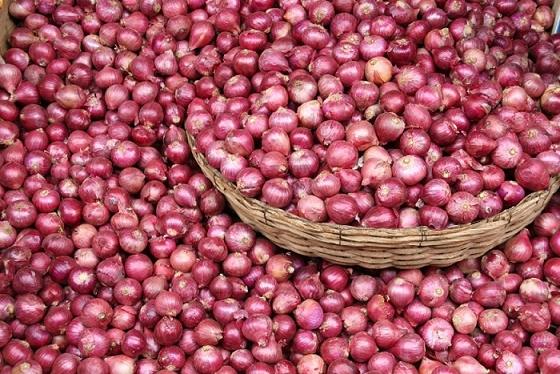 onion_i.png